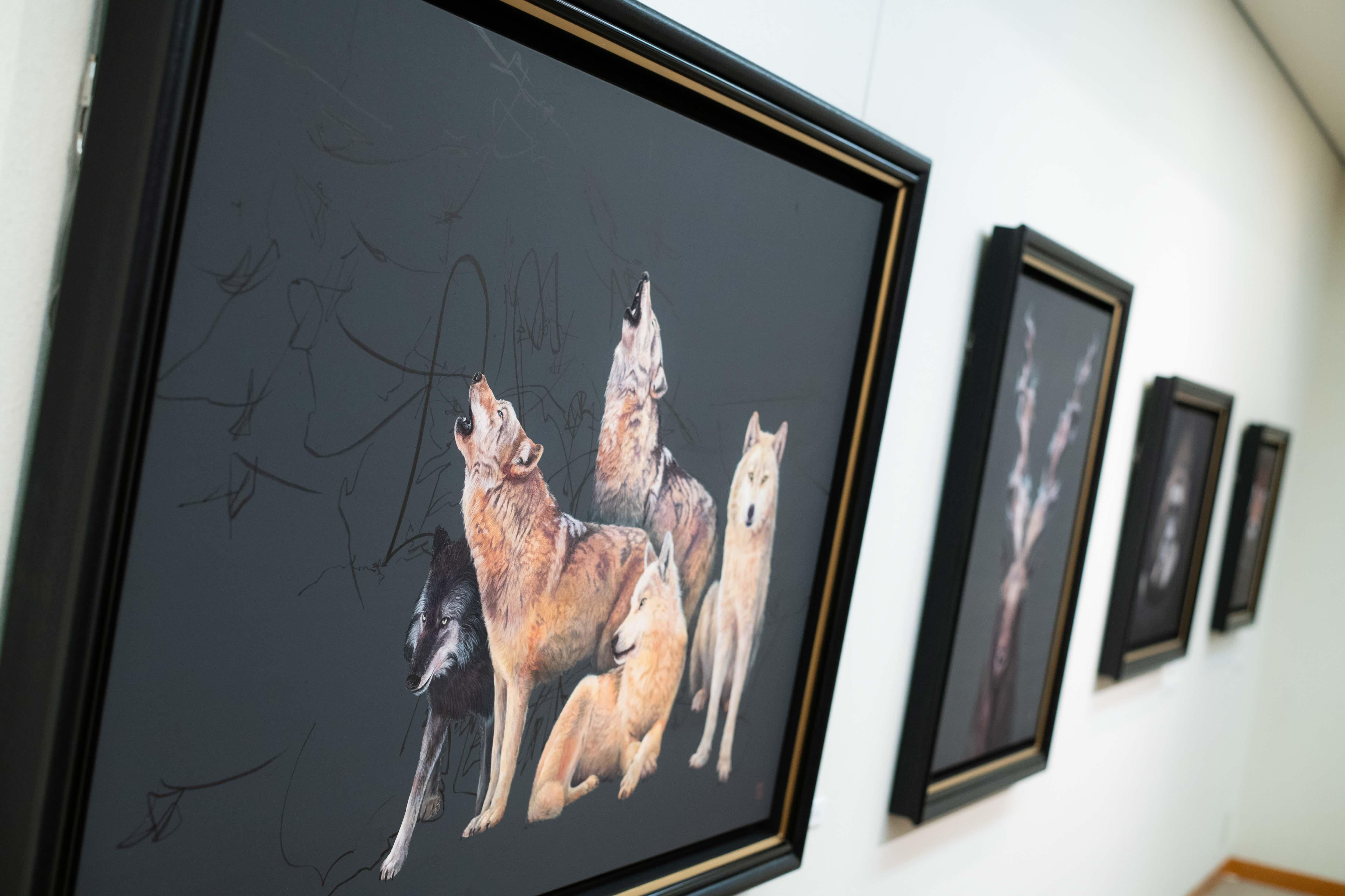https://kanakokinutani.com/exhibition/image/S20201007-060.jpg