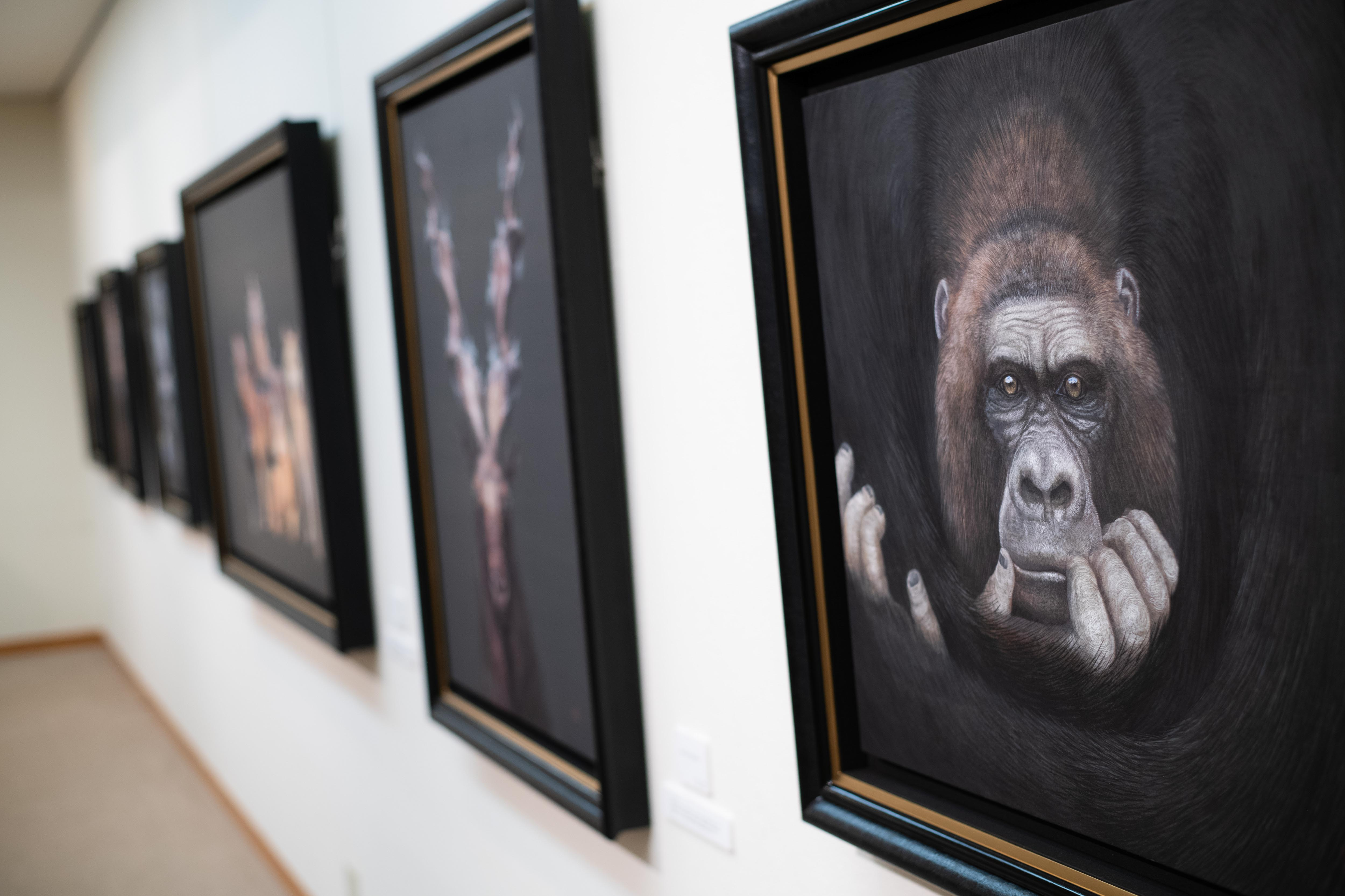 https://kanakokinutani.com/exhibition/image/S20201007-099.jpg