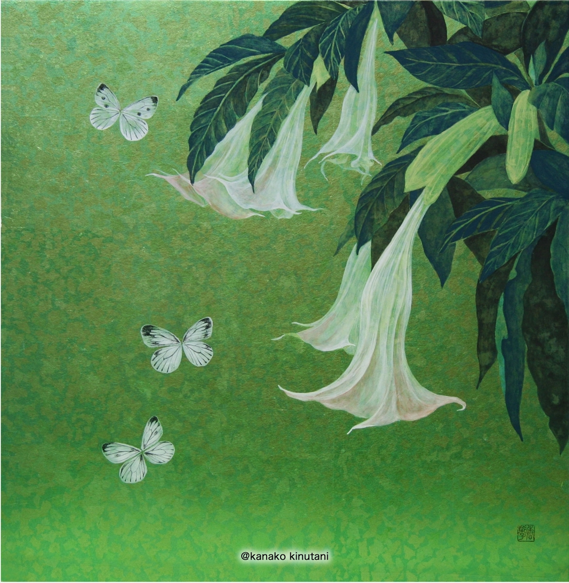 Brugmansia with butterfly