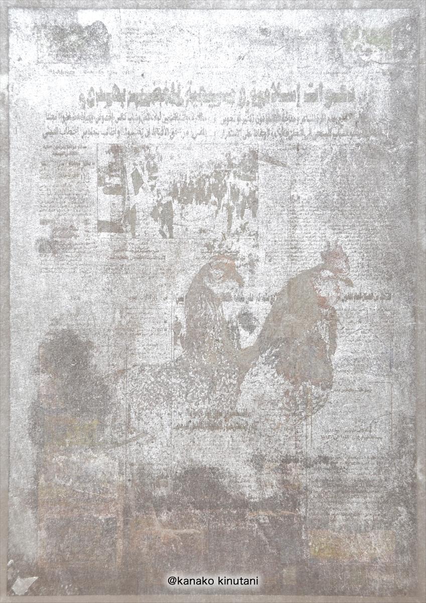 Coexistence EGYPT-Hayomi