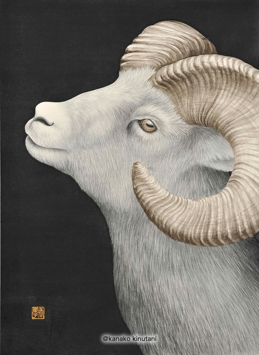 Beyond the Horizon -Dall Sheep-