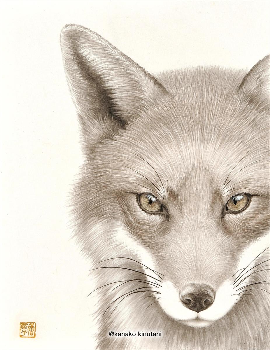 Beyond the Horizon -Fox-