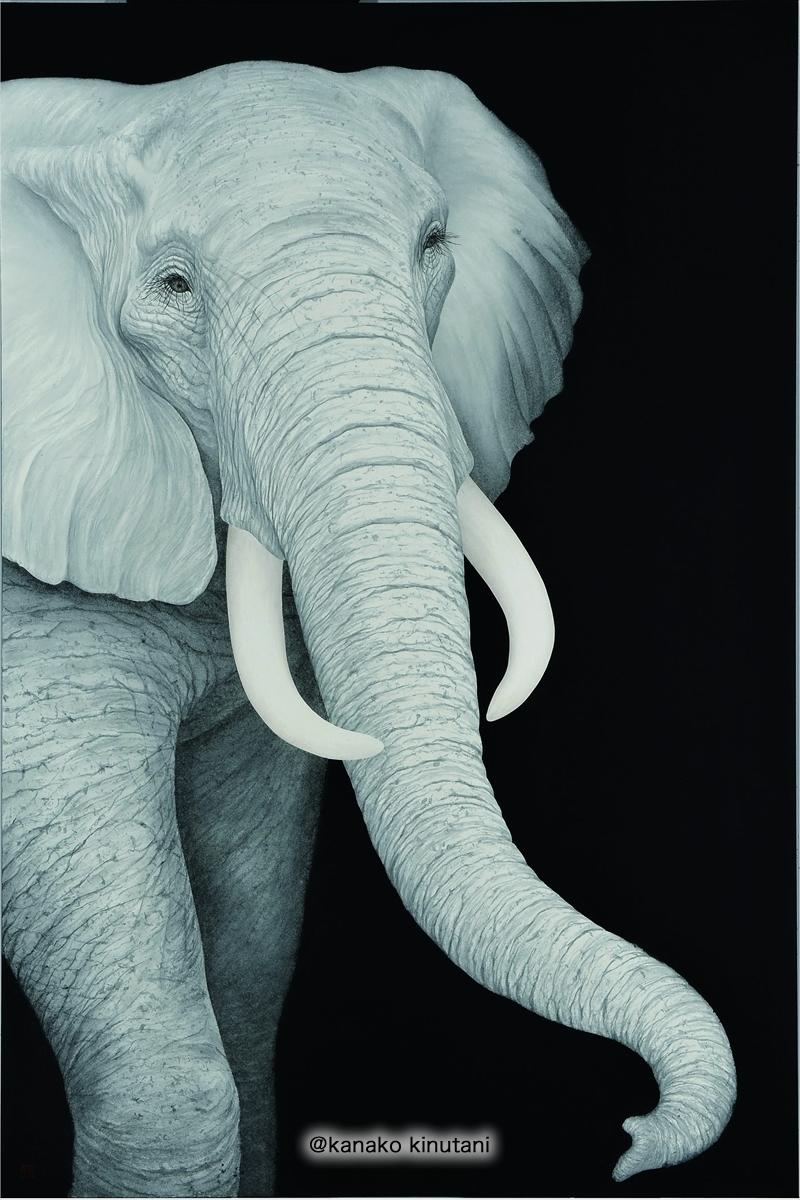 Those who Embark -Elephant-
