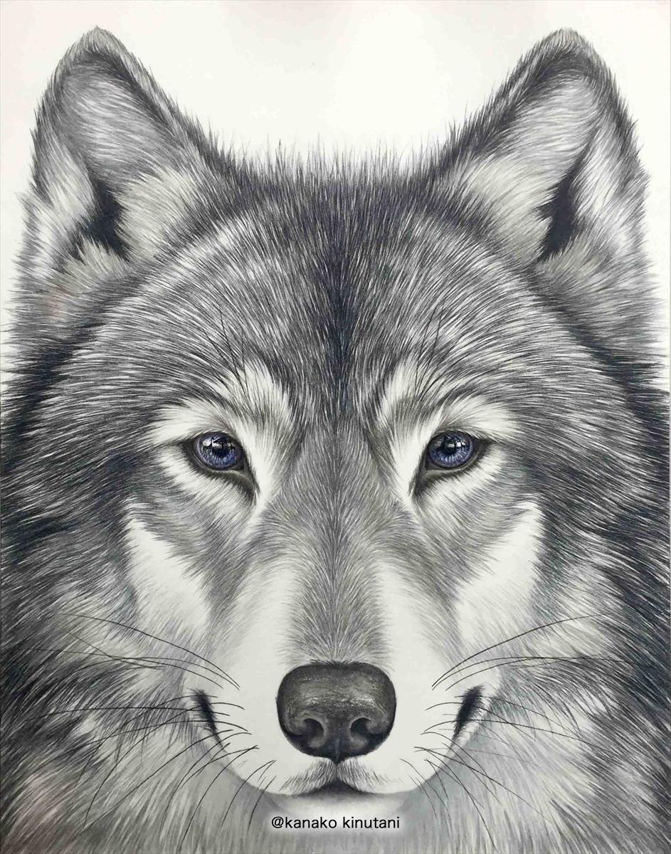 Beyond the Horizon -Wolf-