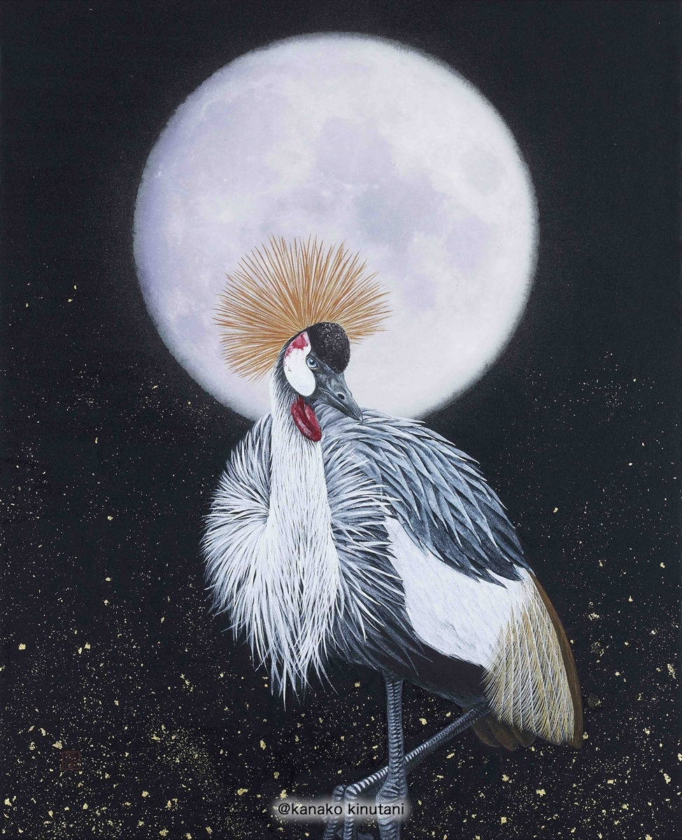 Grey crowned crane with Moon