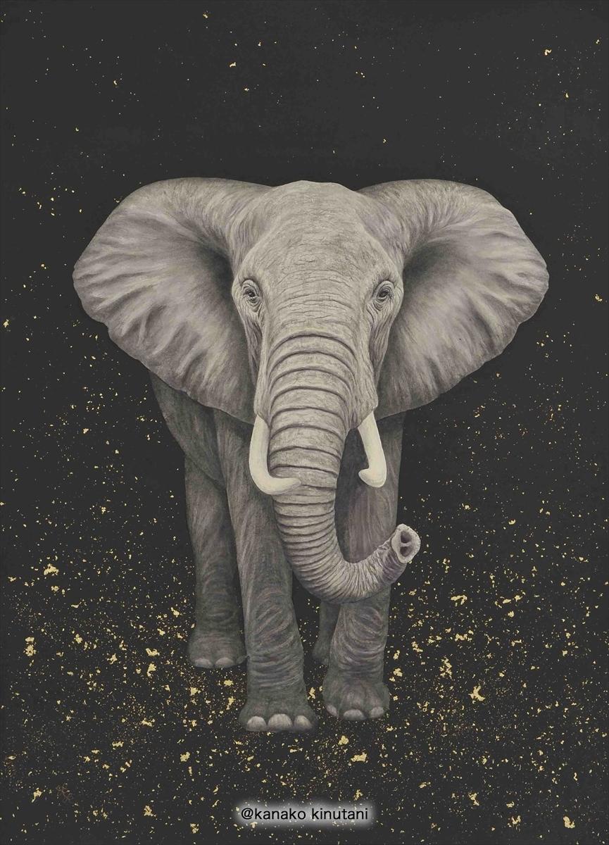 Those who Embark -African elephant-