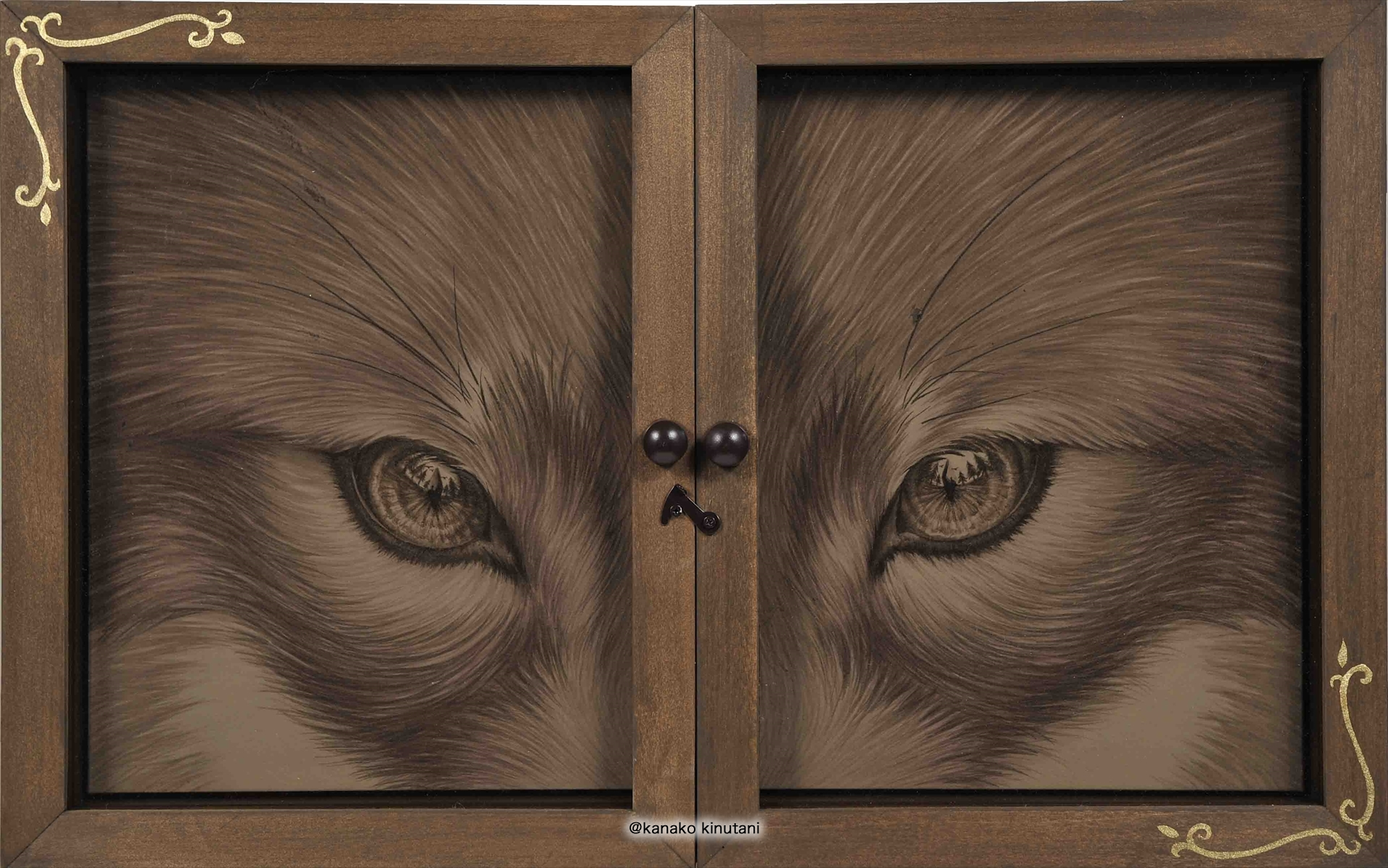 Window-Fox-