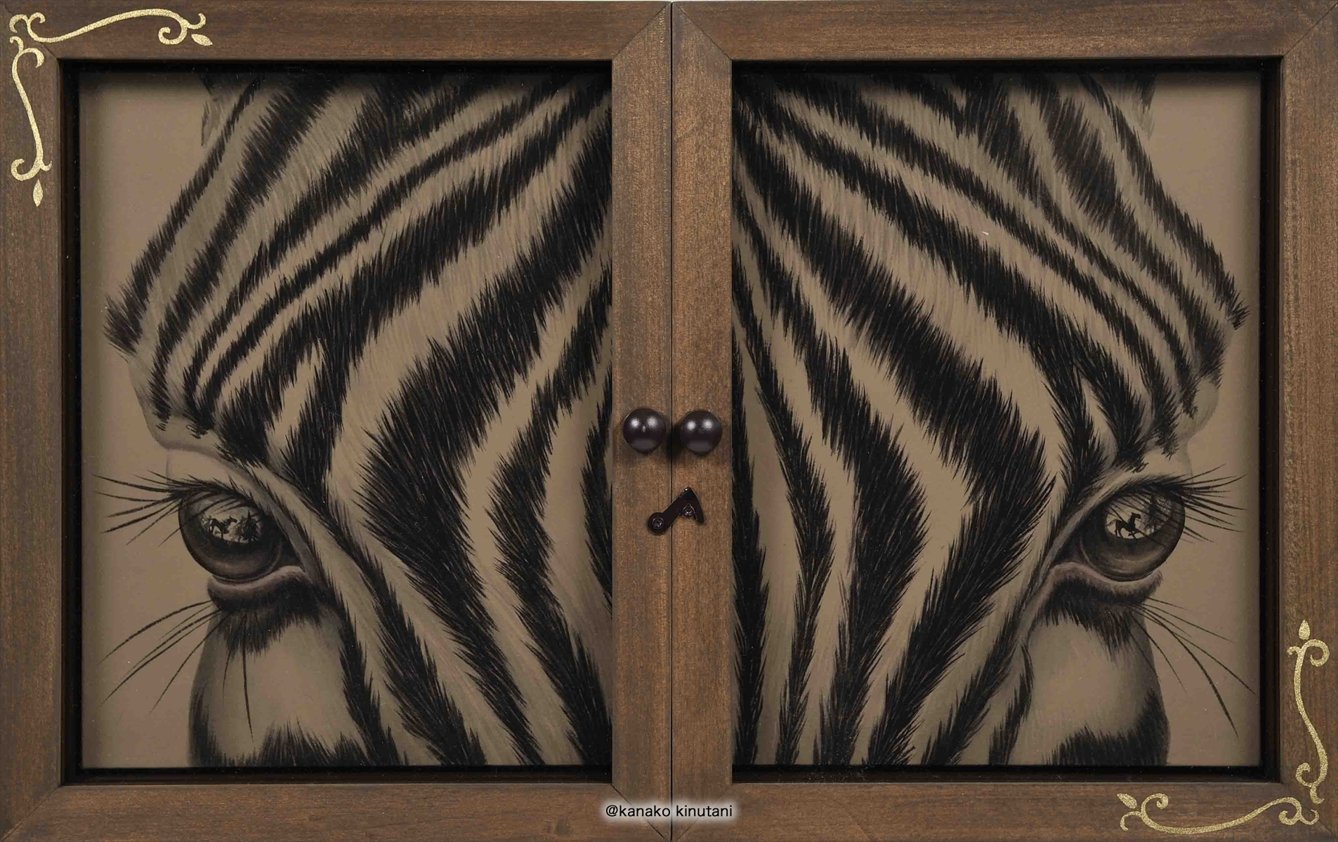 Window-Zebra-