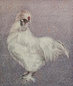 絹羽雄鶏図