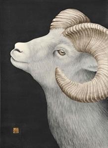 瞳のさきに-Dall Sheep-