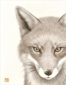 瞳のさきに-Fox-