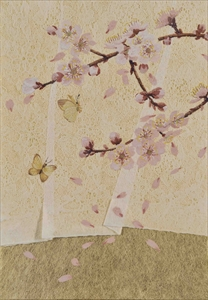Hanafuda 桜にレース