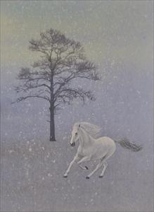淡雪に駆ける