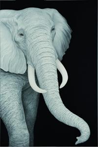 旅に出るものたち-Elephant-