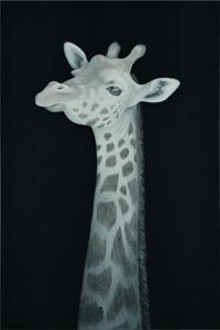 旅に出るものたち-Giraffe-