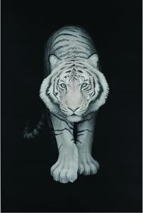 旅に出るものたち-Tiger-