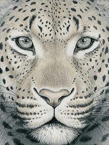 瞳のさきに -Leopard-
