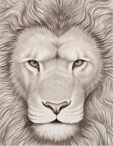 瞳のさきに -Lion-