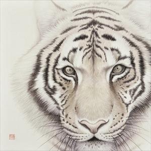 瞳のさきに -Tiger-