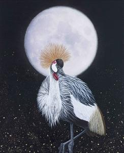 ホオジロカンムリヅルと美月