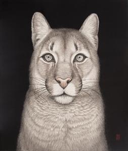 瞳のさきに-Cougar-