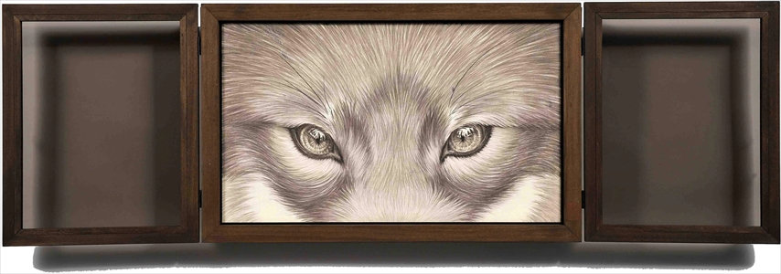 Window-Fox-