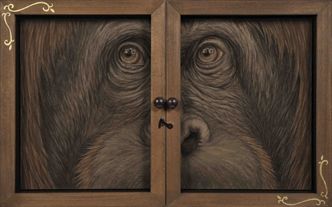 Window-Orangutan-