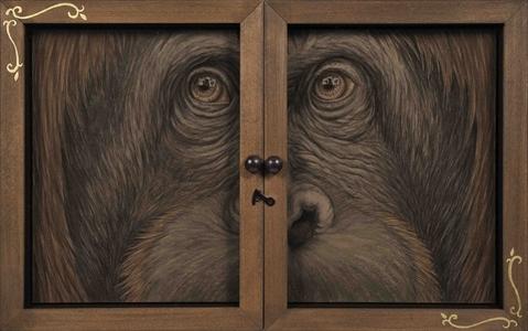 Window-Orangutan-