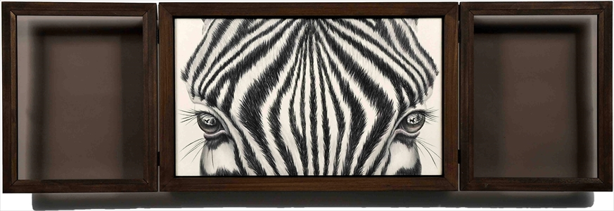 Window-Zebra-